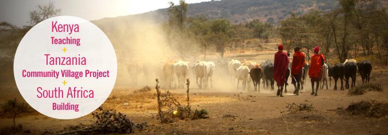 Maasai mara men herding their cattle down a road in Endulen, Tanzania