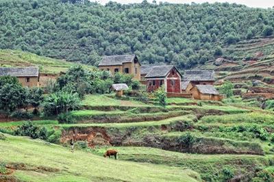 A countryside in Madagascar