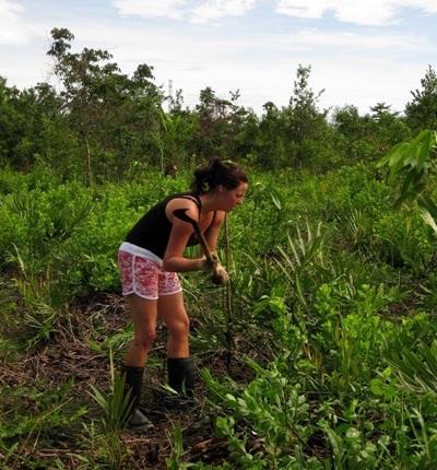 Gap Year Environmental Conservation work in Thailand