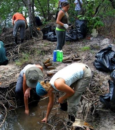 Gap Year Marine Conservation projects in Thailand