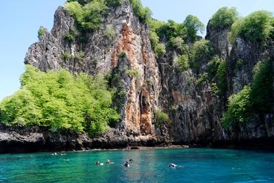 Projects Abroad volunteers conduct marine and conservation work in the Phi Phi islands