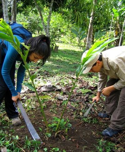 Gap Year Environmental Conservation work in Peru