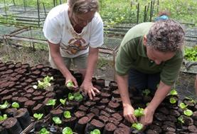 Two older volunteers tend to seedlings in a tree nursery to help with reforestation efforts on our Conservation & Community Fixed Date 50+ Project in Ecuador.