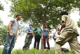 Conservation volunteers plant seedlings as part of our reforestation efforts in a reserve in Costa Rica.