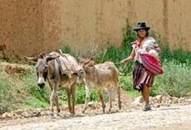 A local woman in Bolivia, where we hold our Quechua language course.