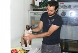 A Veterinary Medicine volunteer cares for and treats a cat at his placement in Mexico.
